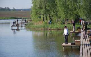 Барыбино – рыбалка, цены, контакты и как проехать