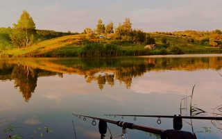 Нарские пруды – рыбалка, рыба водоемов, отзывы, цены, услуги и контакты