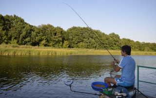 База отдыха Битюг – рыбалка, проживание и цены