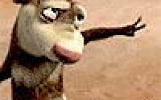 Спиннинги Фаворит Лагуна, Абсолют, Блюберд – отзывы, официальный сайт, цена