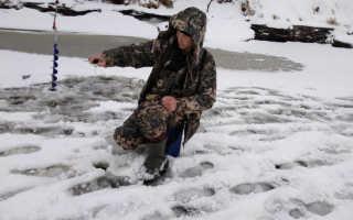 Клев рыбы в Кировской области: водоемы, рыбалка в Криуше, на Вятке, зимняя ловля
