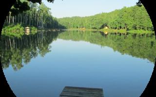 Парк рыбалки и отдыха Лагуна – рыбалка, отзывы, официальный сайт