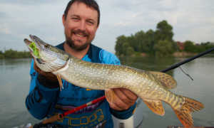 Рыбалка на реке Кубани – рыболовные места и как добраться