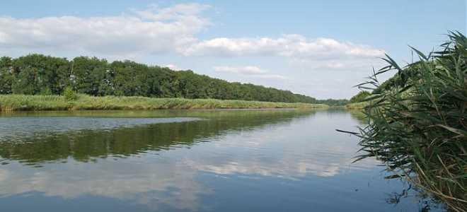Рыболовная база Краснодарский край – где получить улов, платная рыбалка