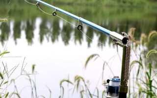 Самоподсекающаяся удочка для рыбалки зимней и летней: отзывы, видео, где купить