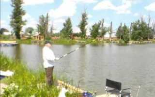 Рыбалка в Лыткино на Пятницком шоссе:платная рыбалка в Три пескаря, отчеты с озера, цены, смотреть видео