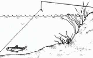 Снасти для рыбалки на реке – донная, полудонка, спиннинговая и поплавочная