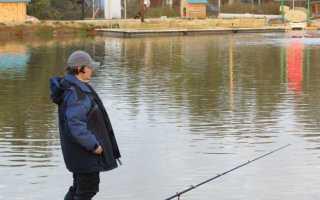 Платная рыбалка у Иваныча, Щелково – Большие Жеребцы, отзывы