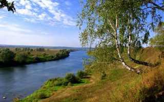 Отчеты о рыбалке в Тульской области – рыбные места, особенности рыбалки