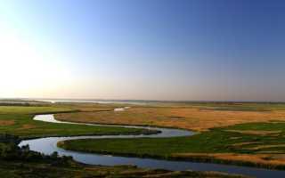 Зимняя рыбалка на Маныче в Ростовской области: видео философа, отдых на реке