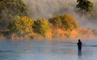 Рыбалка в Карелии дикарем – выбор озера, лучшие места и особенности