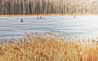 Какое давление лучше для рыбалки – оптимальное атмосферное давление