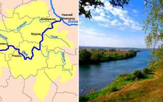 Карта реки Ока – рыбалка на реке, притоки, карта глубин реки