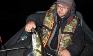 Воблеры для троллинга на судака: лучшие финские и для ловли на Ладоге, Бандит, Рапала, видео
