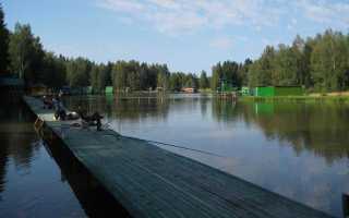 «Хомяково» – рыбалка, цены, контакты и как добраться