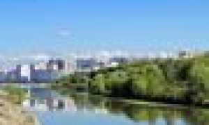 Дудергофское озеро – рыбалка, рыба озера, инфраструктура, отзывы