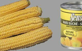 Как правильно насадить кукурузу на крючок -волосяной монтаж при насадке