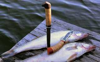 Хорошие, лучшие, нетонущие ножи для рыбалки: фото, где купить, как выбрать?