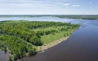 Рыбалка на Вазузе: Вазузское водохранилище, хорошие места, видео, зимняя рыбалка