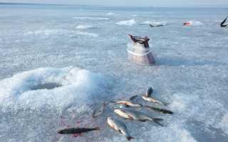 Купить рыболовный бур для зимней рыбалки: мотобур, электробур, сколько стоит, цены, шуруповерты с буром