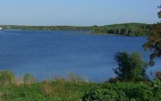 Отчеты о рыбалке на Можайском водохранилище, базы отдыха, зимняя ловля и видео