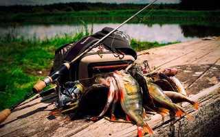 Спиннинги Silver Stream: характеристики, лучшие модели, цены, отзывы рыбаков