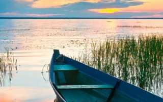 Плещеево озеро – рыбалка, цены, развлечения, особенности, как добраться