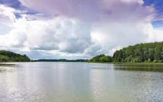 Истринское водохранилище: отчеты о рыбалке, карта, базы отдыха, домики, отзывы
