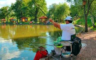 Платная рыбалка в Подмосковье без нормы вылова – клубы, стоимость путевки