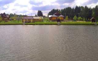 Платная рыбалка в Минской области – преимущества и цены