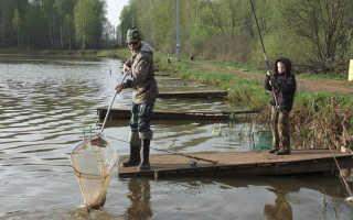 Рыбалка в Леоново: Чеховский район, Подмосковье – платная рыбалка в Чехове Московской области, Мосфишер
